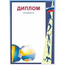 Диплом Д-11 волейбол